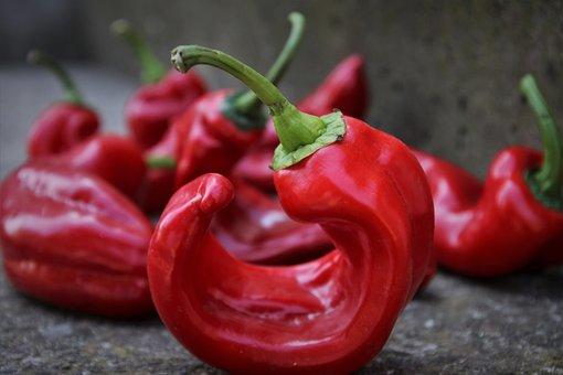 3,000+ Free Pepper & Food Photos - Pixabay