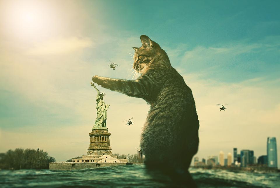 社内で多数派の意見を覆す6つの方法|猫が自由の女神を触ろうとしている写真|社内で意見が合わない時の対処法