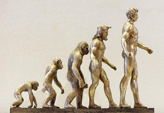 進化, 開発, フォワード, 猿, 人間, 変化, 変更, 知識