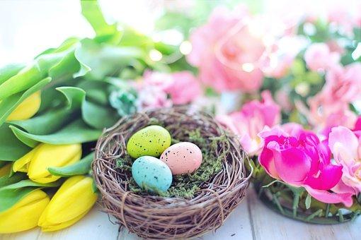 Pastel Images Téléchargez Des Images Gratuites Pixabay