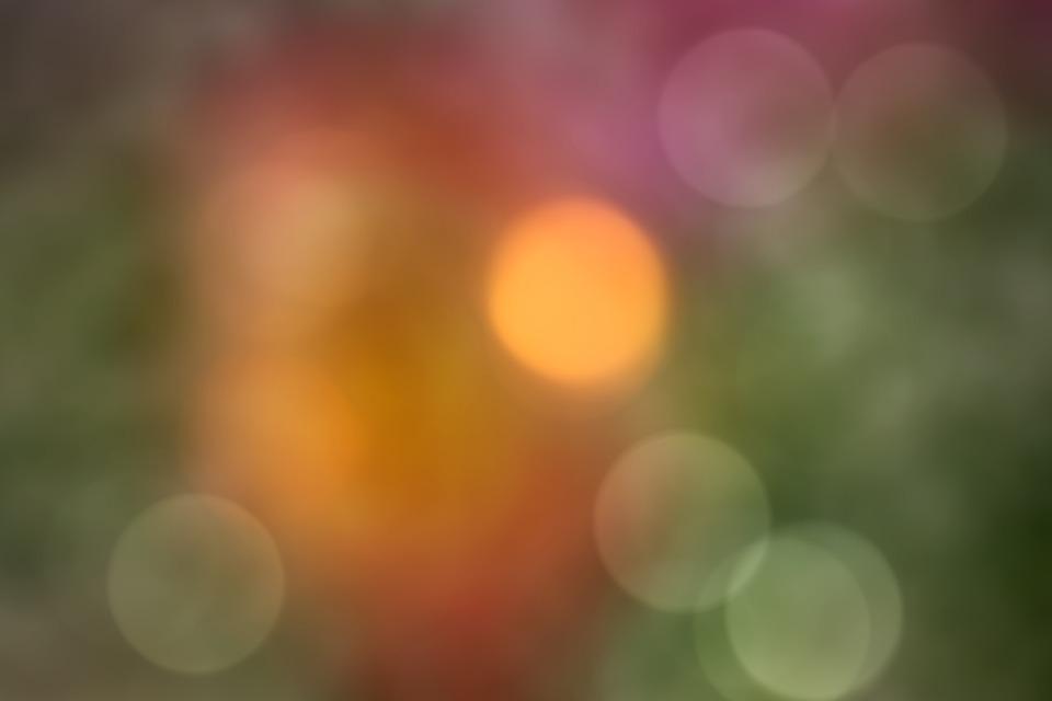 日本www网站视频
