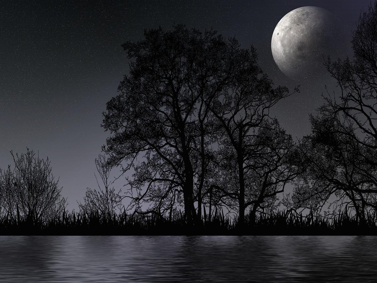 женат, отражение ночи картинки связи этим сих