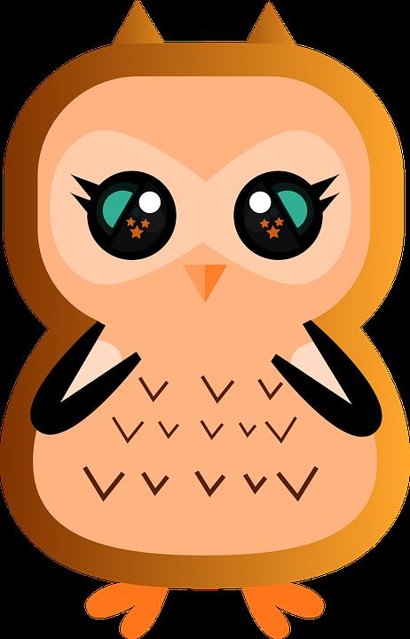 61 Gambar Hewan Burung Hantu Kartun Terbaik