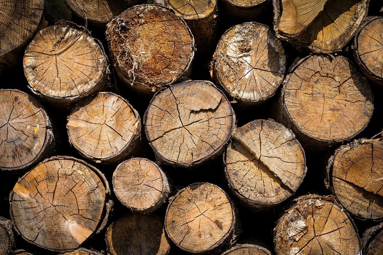 На картинке дрова монеты