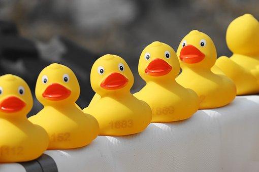 鴨応, アヒル, ゴム製のアヒル, プラスチック鴨, ダックレース, 競争