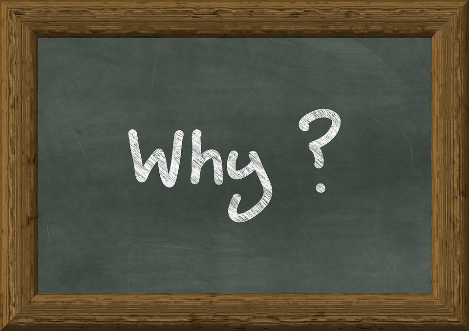 「Why」的圖片搜尋結果