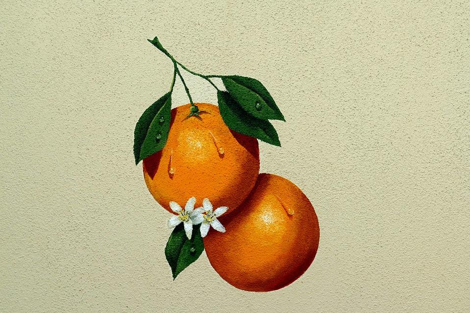 Portakal Meyve Boyama Duvar Pixabay De Ucretsiz Resim