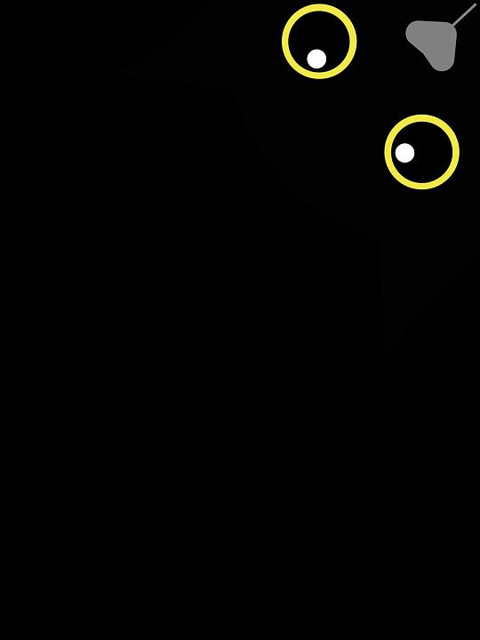 gratis nero micio gallerie shakira sesso video