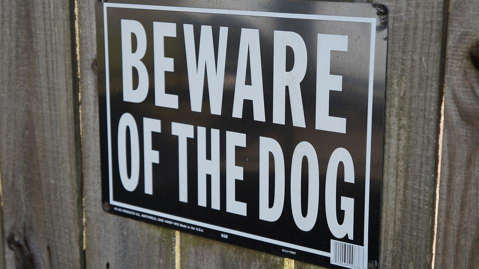 Beware Of Dog, Sign, Beware, Warning, Dog
