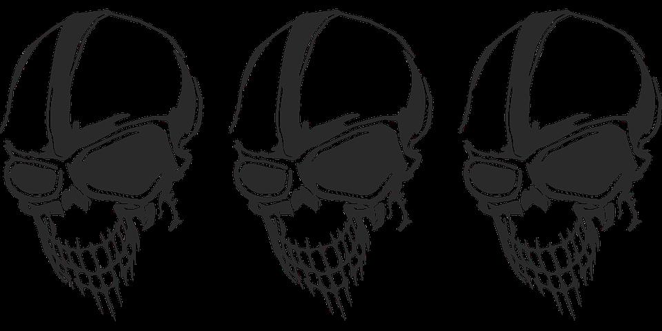 Skull Skeleton Head Free Vector Graphic On Pixabay