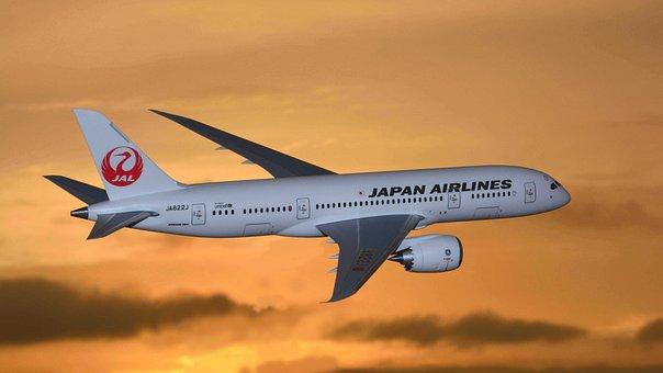 空港, 日本, 日本航空, 模型飛行機, ボーイングの強みを生かした