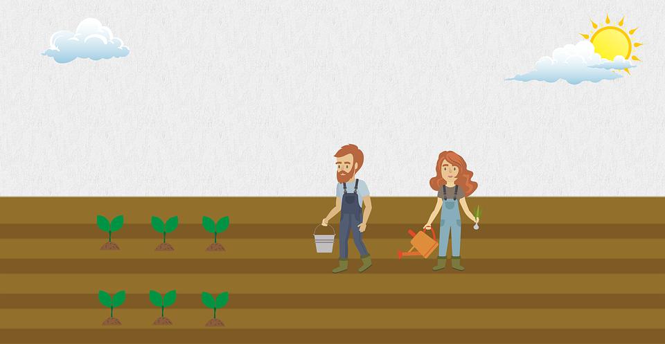 Landwirte Garten Samen Kostenloses Bild Auf Pixabay