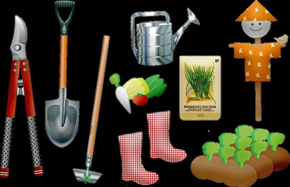 Bisnis pertanian kreatif, Taman, Alat, Tanaman Yang Tumbuh, Biji, Sekop, Berkebun