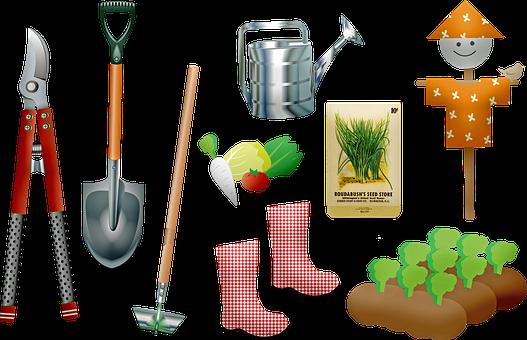 庭, ツール, 植物の成長, 種子, シャベル, ガーデニング, 土, 植木屋