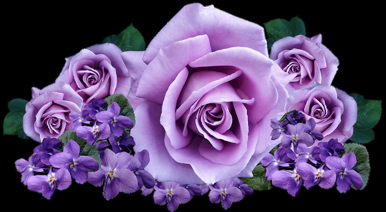 стремительного розы с фиалками картинки знаменитой родинкой