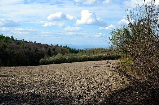 필드, 흙, 농업, 자연, 을 들고, 재배, 풍경, 대지, 마을, 봄