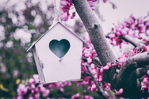 Aviary, Pink, Cute, Decor, Tree