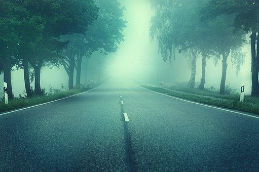 道路, 木, 霧, アスファルト, 孤独な, 空, 霧銀行, ミルキー