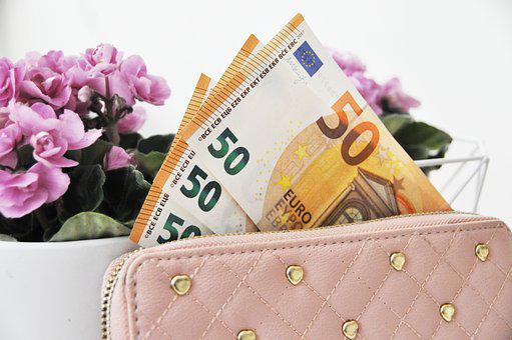 Euro, Cash, Wallet, Banknote, Europe