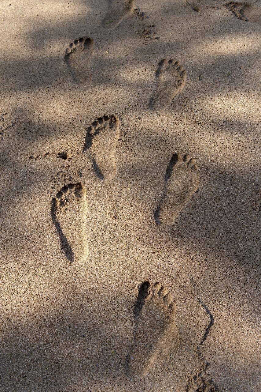 картинка песок отпечатки овощи сегодня