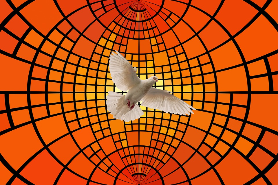 Dove, District, Light, Holy Spirit, Pentecost, Religion