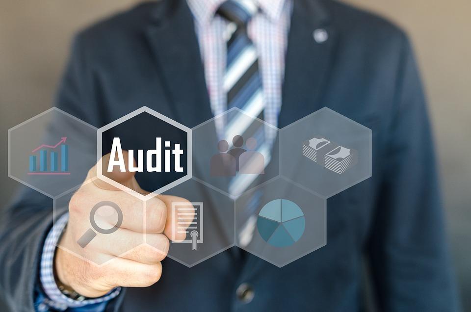 Auditoría, Inspección, Examen, Contabilidad, Auditor