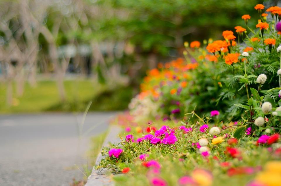 Beautiful Flower Garden Free Photo On Pixabay
