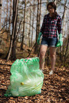 Nature, Garbage, Pollution, Ecology