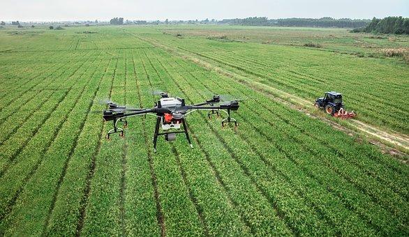 Dji, 大疆, 无人机, 植保无人机, 农田, 农业, 植保, T16, 水稻