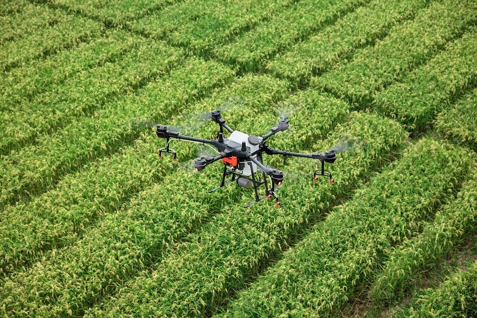 A drone hovering over a field of crops.