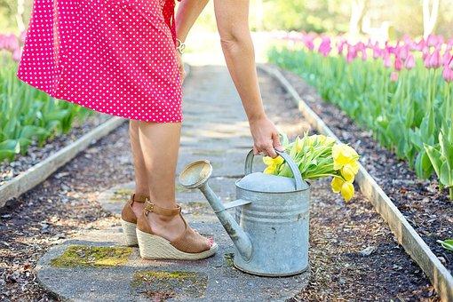 Choisir un sol de jardin