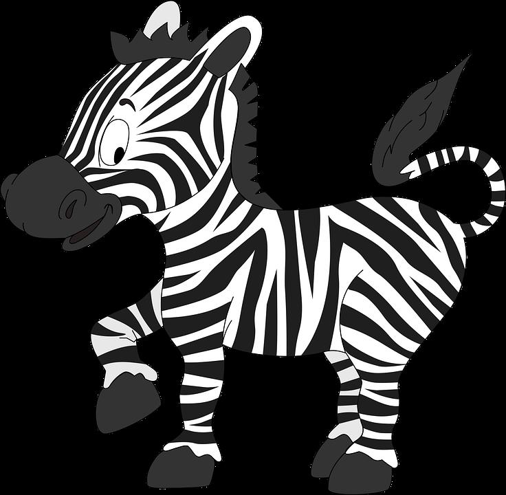 Cebra Animales Lindo Gráficos Vectoriales Gratis En Pixabay