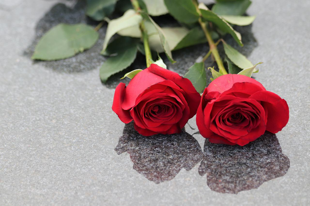 две розы картинка фото сход тепловоза двух