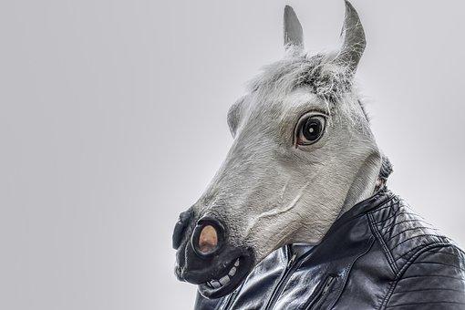 Horse, Leather Jacket, Mask, Funny, Mold