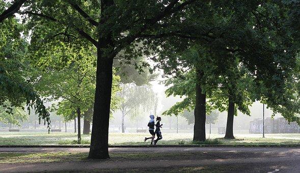 Joggen, Bewegung, Fitness, Fit, Laufen
