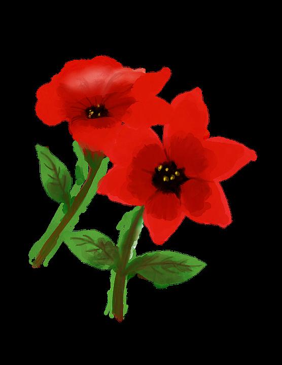 Cicek Suluboya Bahar Pixabay De Ucretsiz Resim