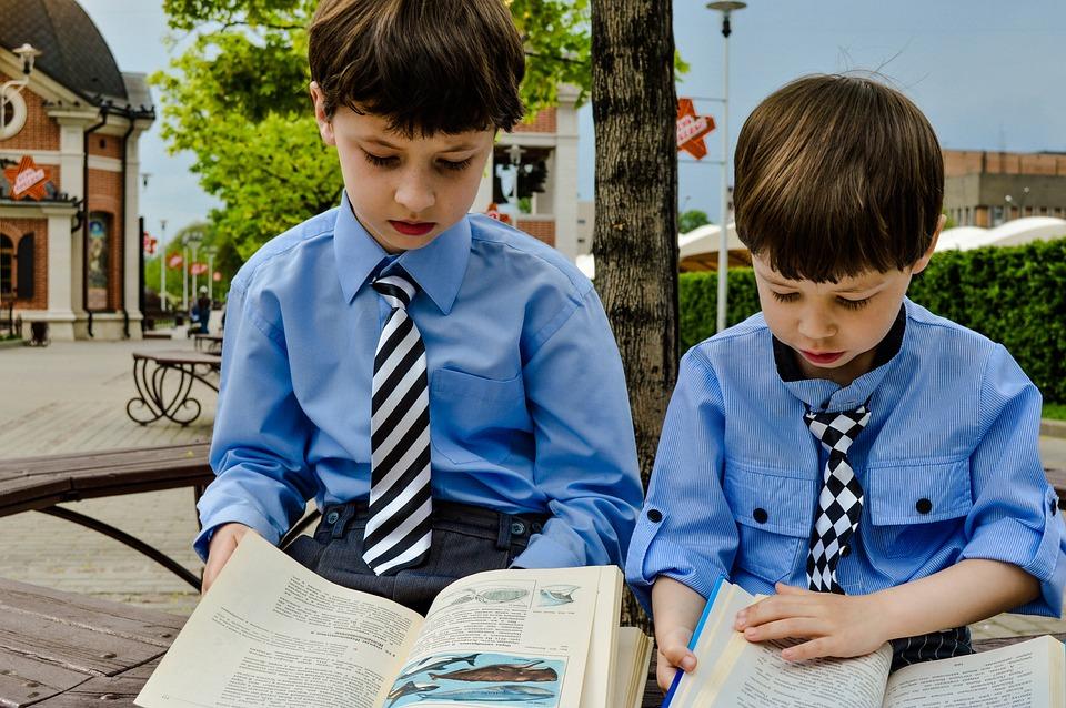 Leen, Aprenden, Niños, Estudio, Ocupación, Escuela