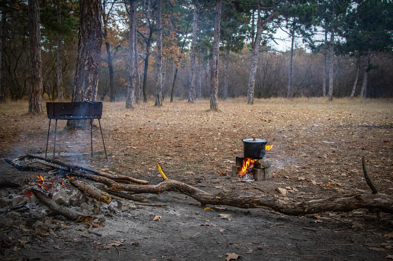 Природа фото лес шашлыки