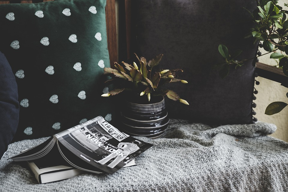 Stilllife, Cozy, Cushion, Plant, Books