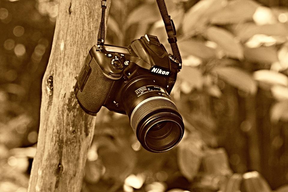 Digital Camera, Photography, Technology, Equipment