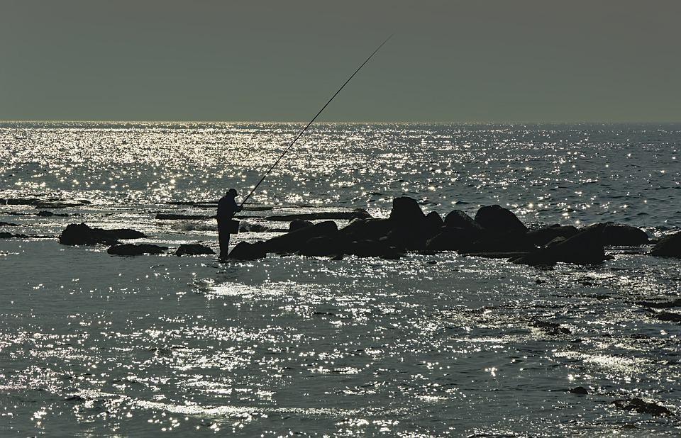 Mare, Acqua, Pescatore, Pesce, Rock, Argento, Sparkle