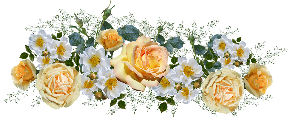 https://cdn.pixabay.com/photo/2019/06/10/01/24/flowers-4263353_960_720.png