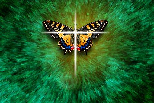 Butterfly, Cross, Faith, Religion