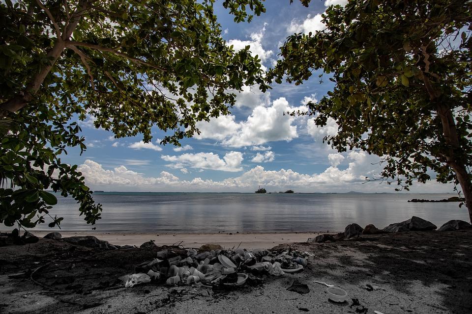 太陽, ビーチ, ごみ, プラスチック, 自然, 海, オーシャン, 風景, 汚染, 土, 生態学, 熱帯