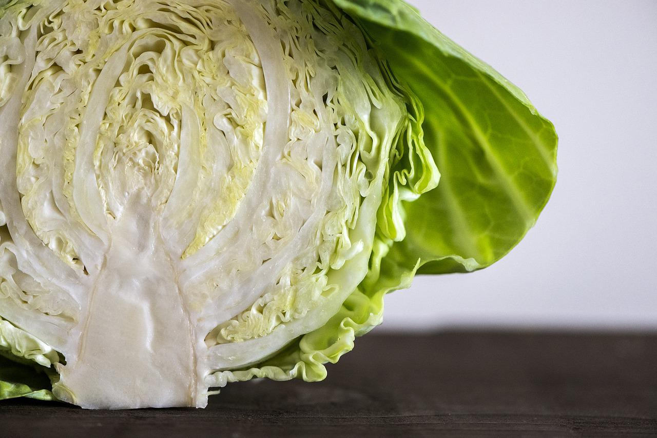 cut, raw cabbage on table