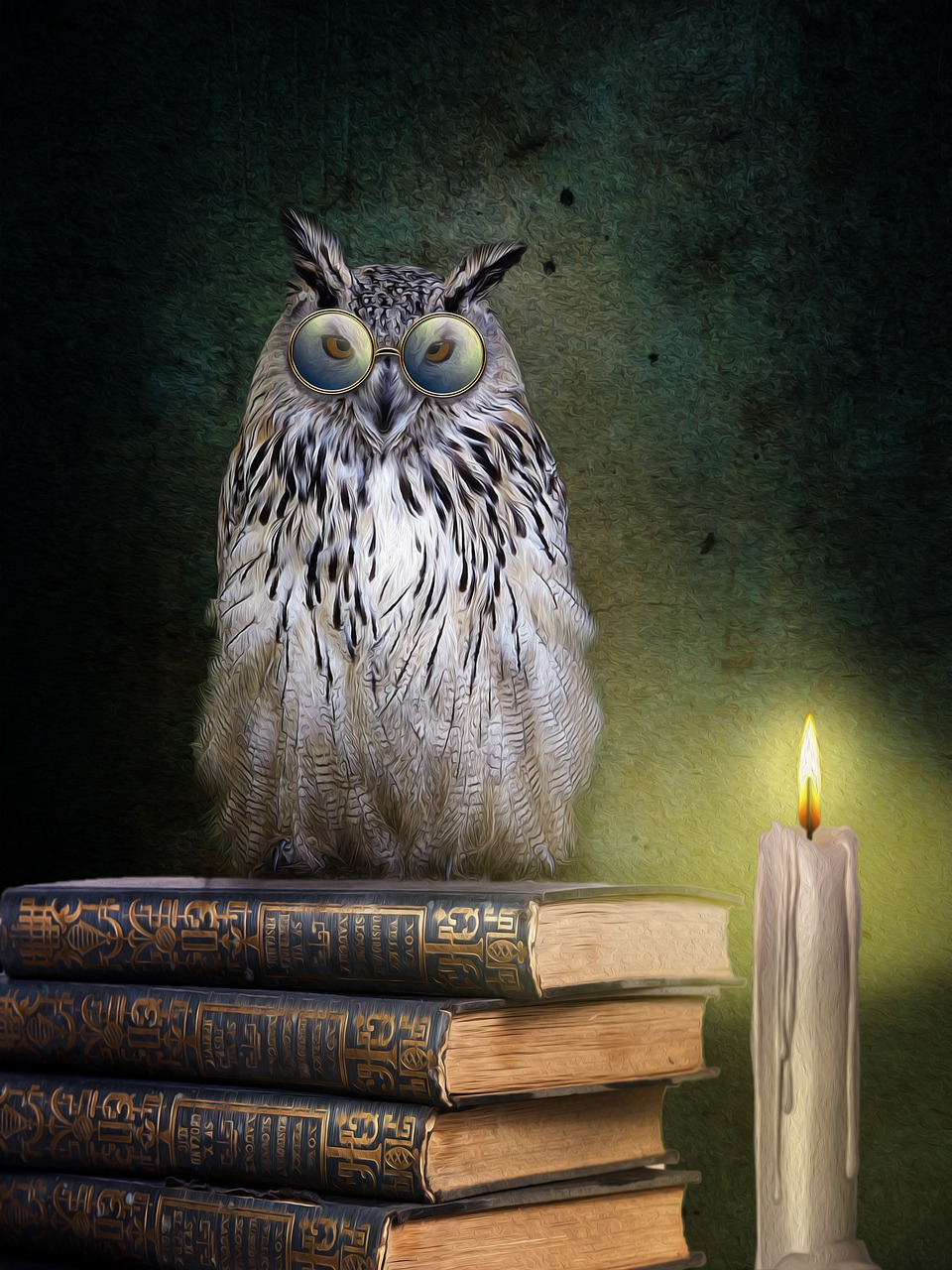 Картинки сова книги
