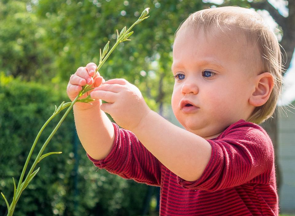 Pieni Lapsi, Tutkia, Luonto, Lapsi, Lapsuus, Kesällä