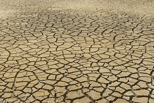 Dry, Dehydration, Drought, Rip, Crack