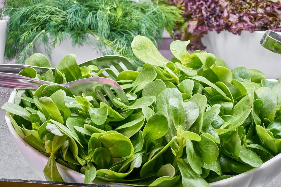 Spinach, สีเขียว, ผัก, เหล็ก, วิตามิน, ใบ, ผลไม้, อาหาร