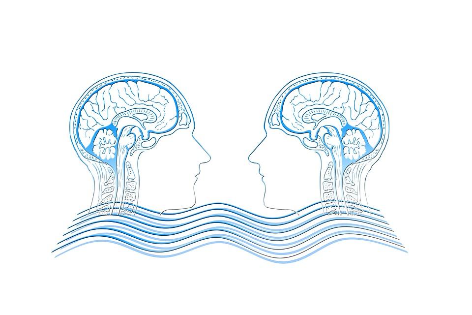 Empathie, Hoofd, Hersenen, Golf, Mededogen, Compassie